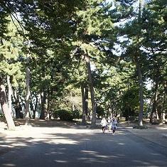 ジョウモウ大学×敷島パークマネージメントJV−公園の中で「0」から考える公園ゼミ(全5回の第2回)−公園散歩からスポーツ施設の内側を見学して公園の新しい使い方を考える